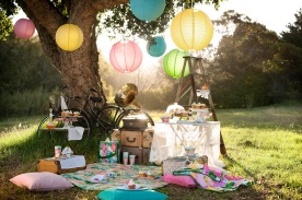 Grand-picnic-party